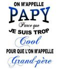 "Tee Shirt ""Papy cool"""
