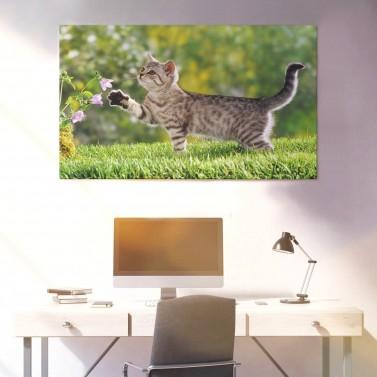 Photo sur poster 70 X 100 cm paysage